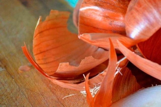 луковая шелуха как удобрение для рассады цветов