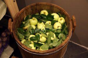 Простой рецепт моченых яблок с горчицей