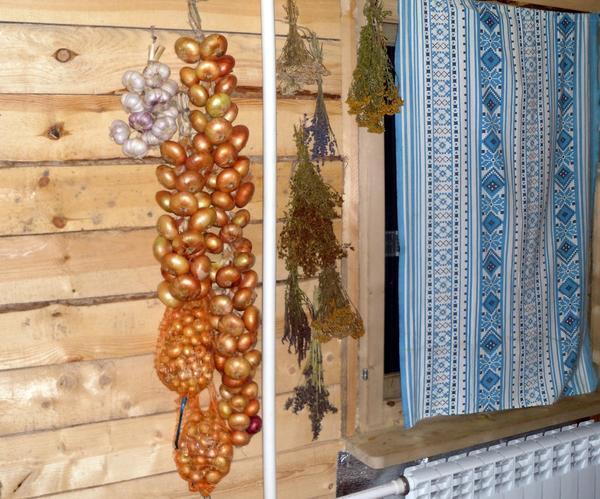 Как лучше хранить лук севок