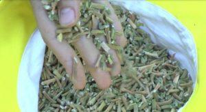 Заготовка зелени чеснока на зиму