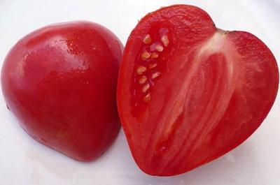 Семена томатов мазарини