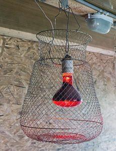 Инфракрасный обогреватель для курятника