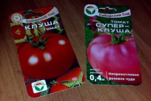 Томат Супер Клуша: отзывы, фото, урожайность