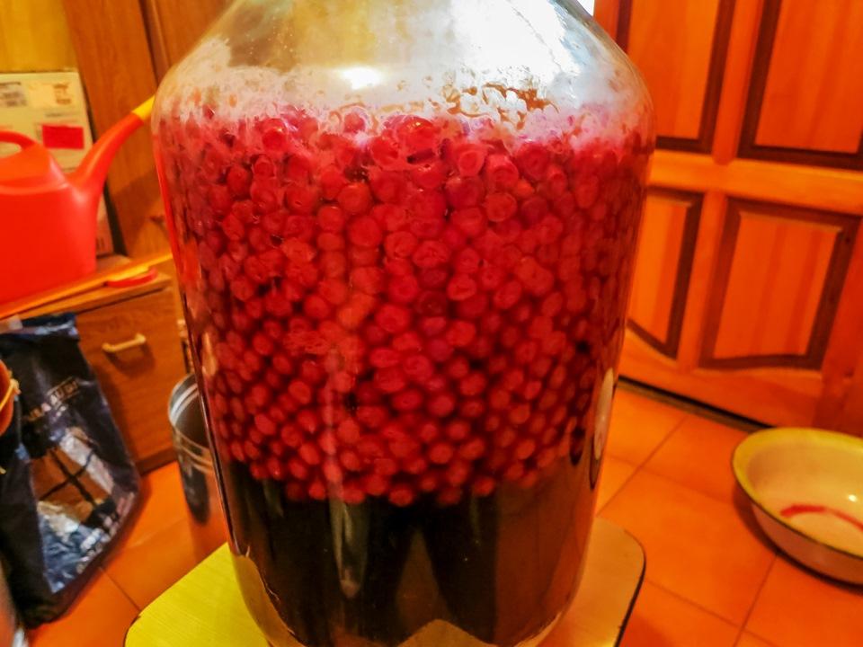 Изготовление домашнего вина из вишни