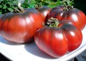 Черные сорта томатов с фото и описанием