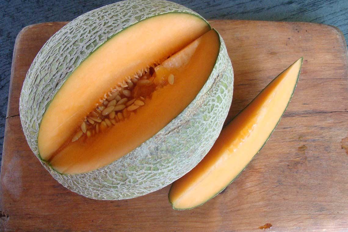 Канталупа что это за фрукт