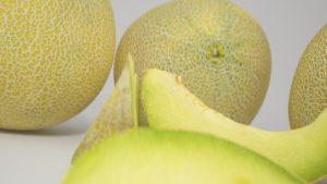 Мускусная (мускатная) дыня канталупа (cantaloupe): фото, описание сортов, отзывы