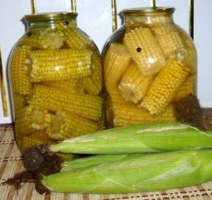 Хранение кукурузы в элеваторах транспортеры металлических сеток