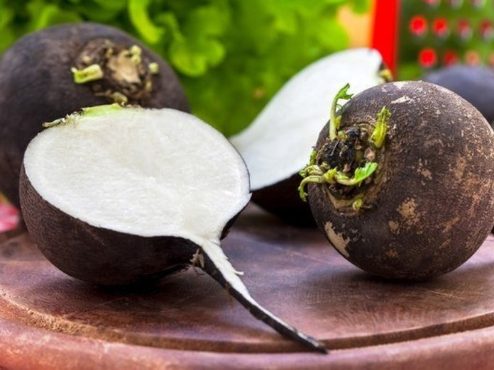 Какие витамины в редьке черной