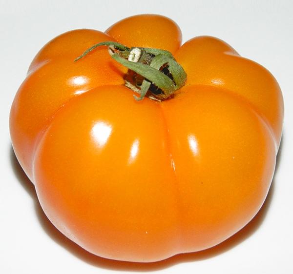 Томат Амана Оранж(Amana Orange): описание сорта, отзывы и фото