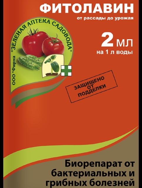 Посадка груши весной (летом) саженцами: в Подмосковье, в Сибири, в средней полосе, сроки, схема, правила ухода