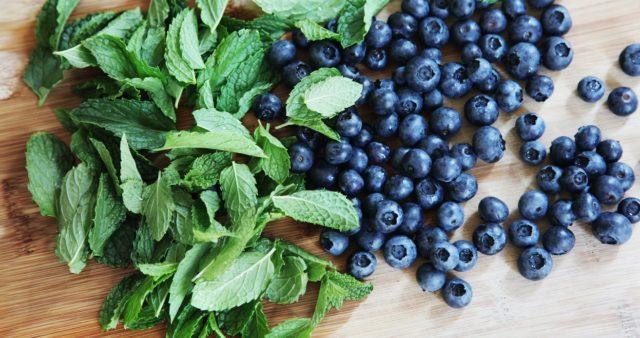Черника обыкновенная: состав и калорийность, полезные свойства и противопоказания для организма человека, для зрения, при диабете