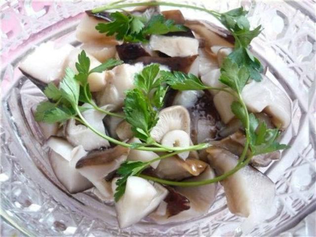 Грибы тополевки фото и описание как готовить