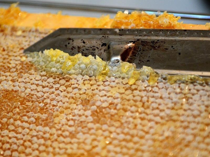 Забрус пчелиный польза и вред