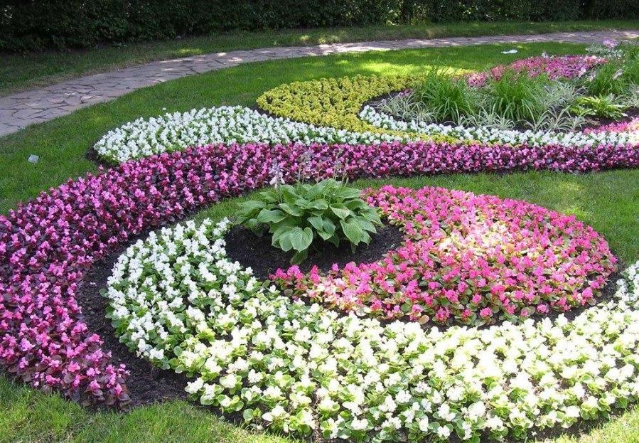 Рабатка — что это, создание своими руками, фото, подбор растений