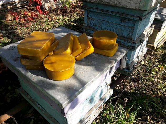 Пчелиный воск: польза и вред, лечение и применение в домашних условиях