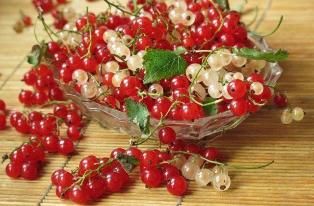 Желе из красной смородины холодным способом (без варки): простые рецепты