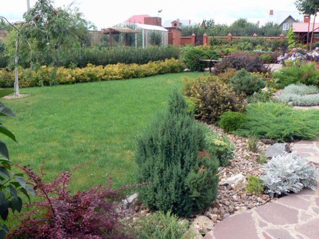 Дизайнерский ландшафт сада фото собственное предсказание