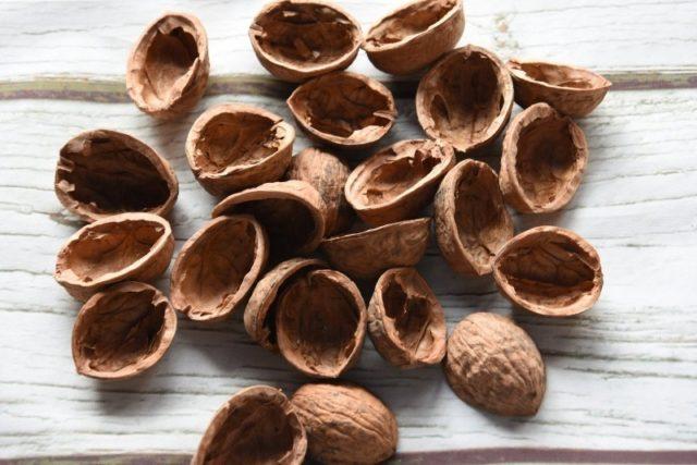 Кожура и скорлупа грецкого ореха: применение, рецепты, отзывы
