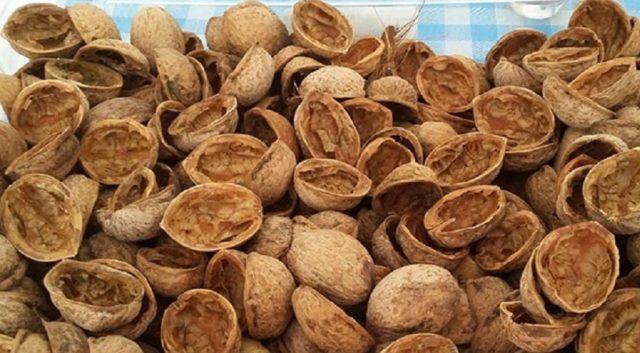 Использование скорлупы грецкого ореха в огороде