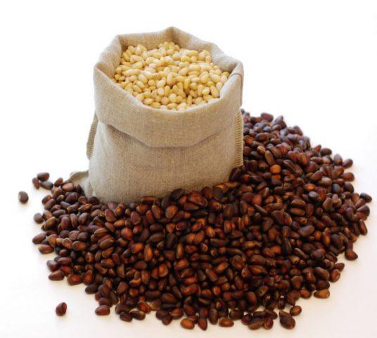 Как хранить кедровые орехи: очищенные, в скорлупе, в шишках