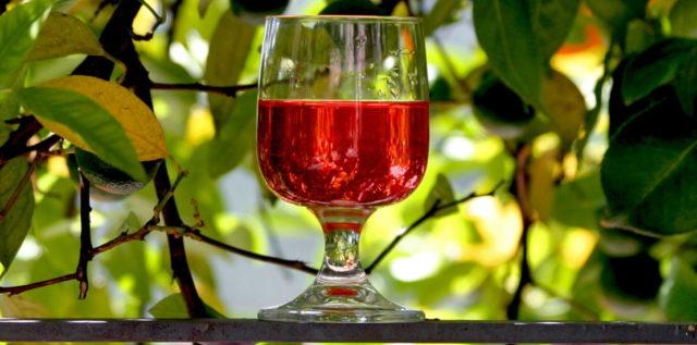 Настойка из барбариса: на самогоне, водке, рецепты