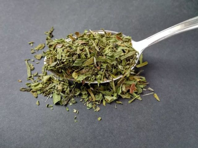 Тархун (эстрагон): полезные свойства травы и противопоказания, состав