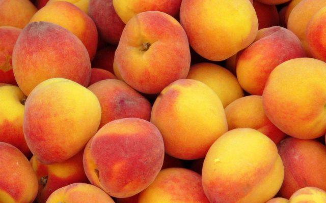 Как делают вяленые персики в домашних условиях