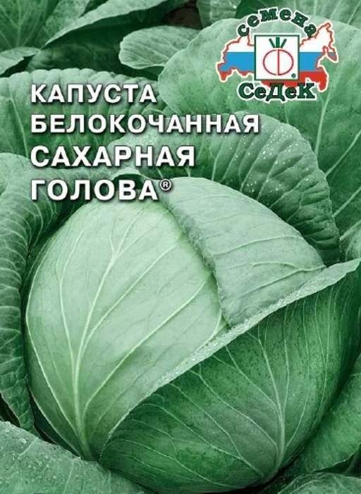 Капуста Сахарная голова: характеристика и описание сорта, фото