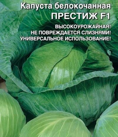Капуста Престиж F1: описание сорта, характеристика, урожайность