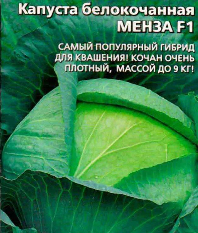 Капуста Mensa (Менза) F1: описание сорта, фото, отзывы