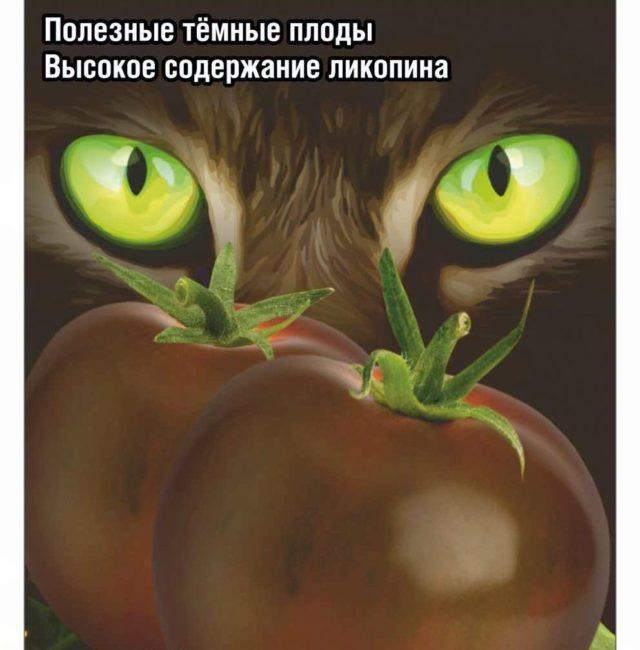 Томат Черный кот F1: описание сорта, отзывы, фото
