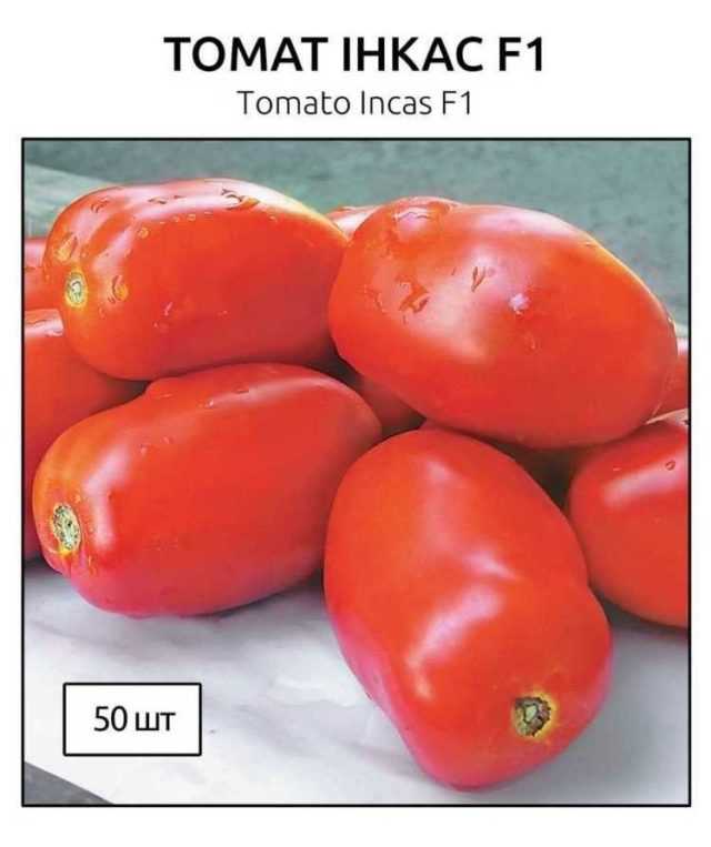 Томат Инкас F1 (Ф1): описание сорта и характеристики, фото куста
