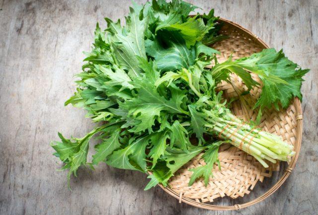 Японская капуста Русалочка: описание сорта, выращивание из семян